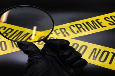 FBI Olay Yeri İnceleme / TAKIM AKTİVİTESİ